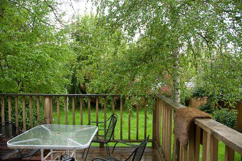 Backyard-1