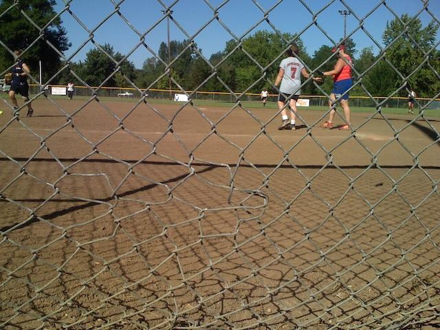 Knarly_fence