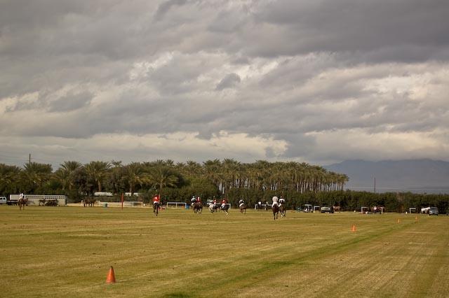 Whole_field