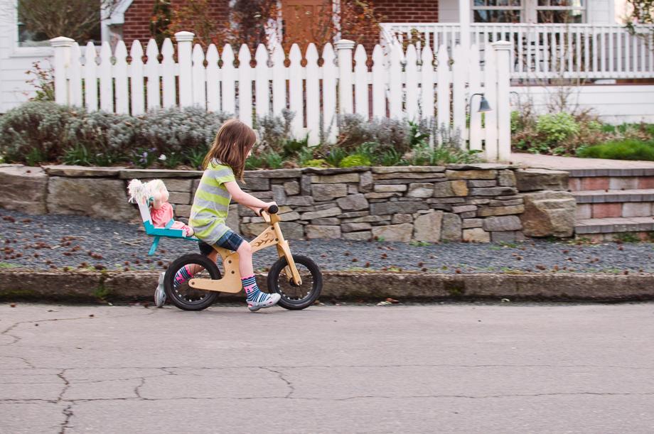 dolly bike seat-7