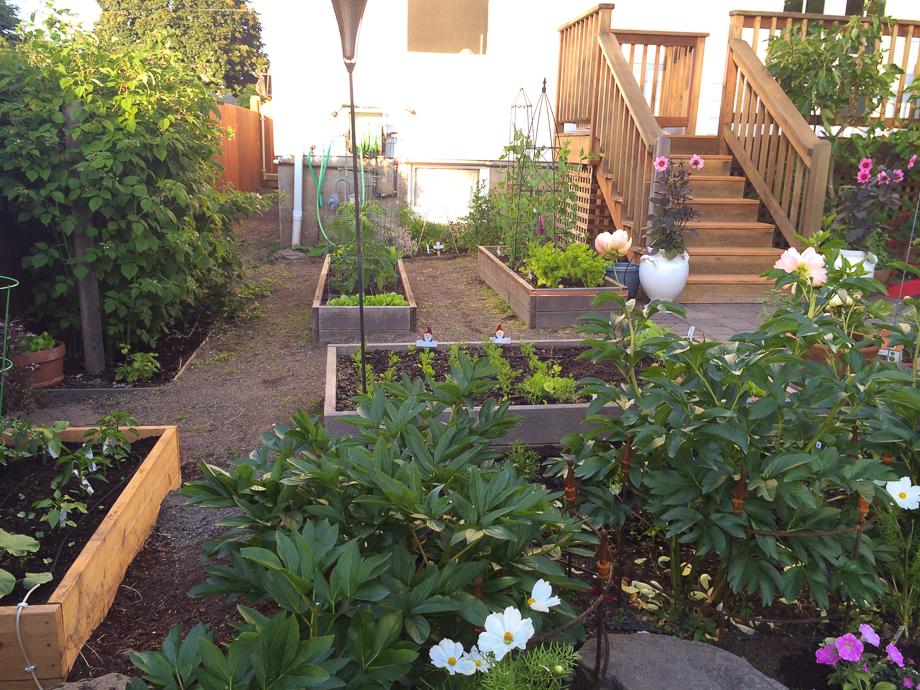 the yard may-15