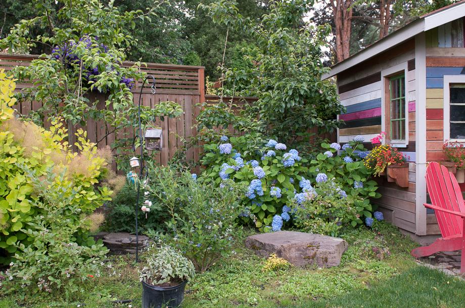 june late garden-4