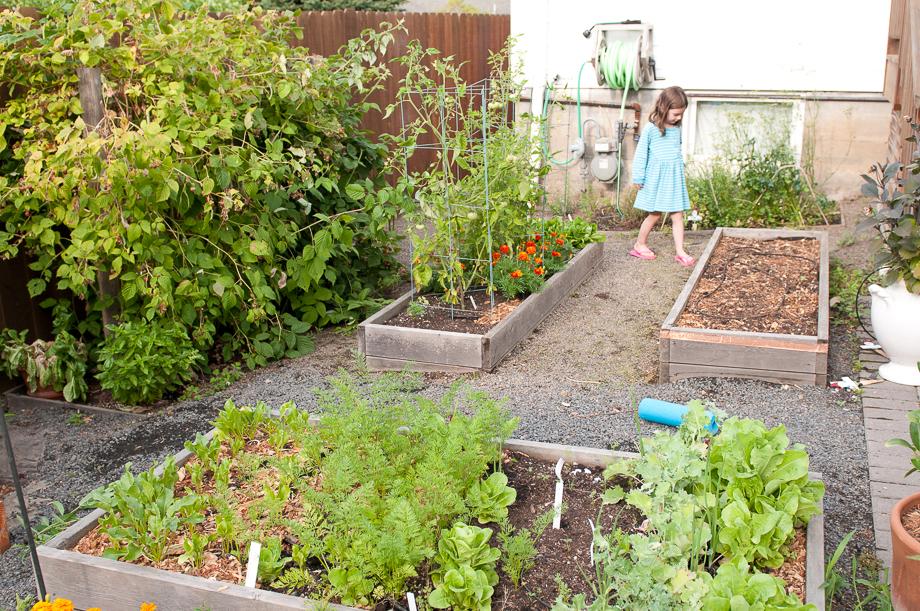 july garden-1