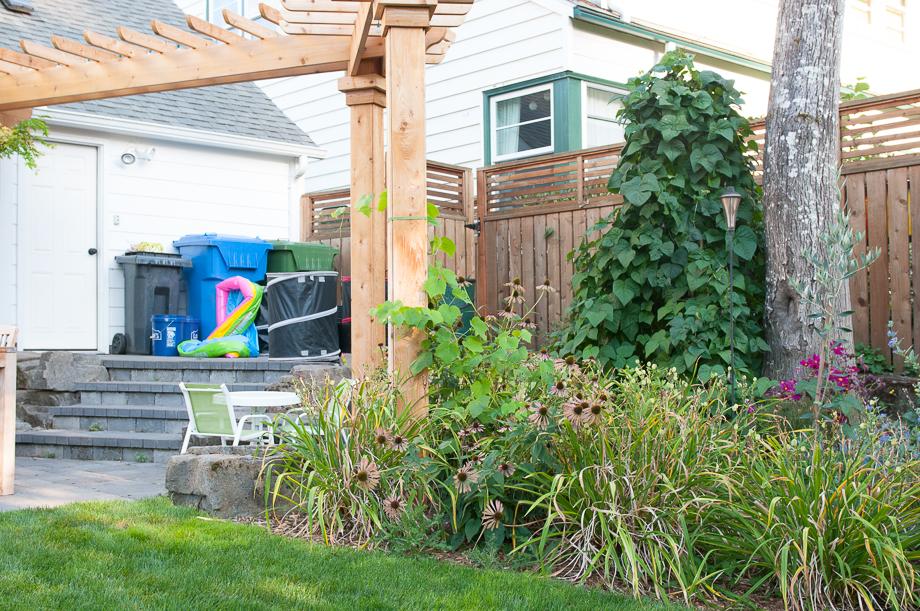 garden end august-10