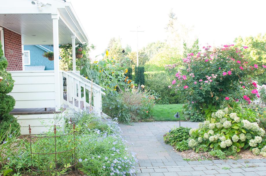 garden end august-14
