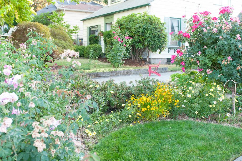 garden end august-15