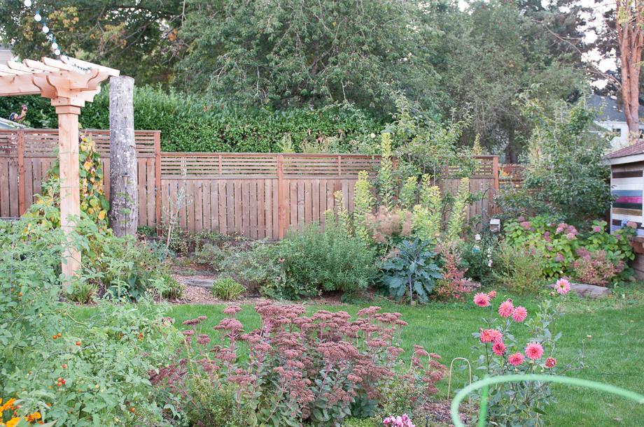 october garden-2