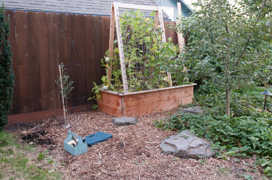 october garden-5